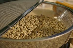 焙煎前の珈琲豆