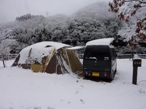 雪中のティエラとKONG