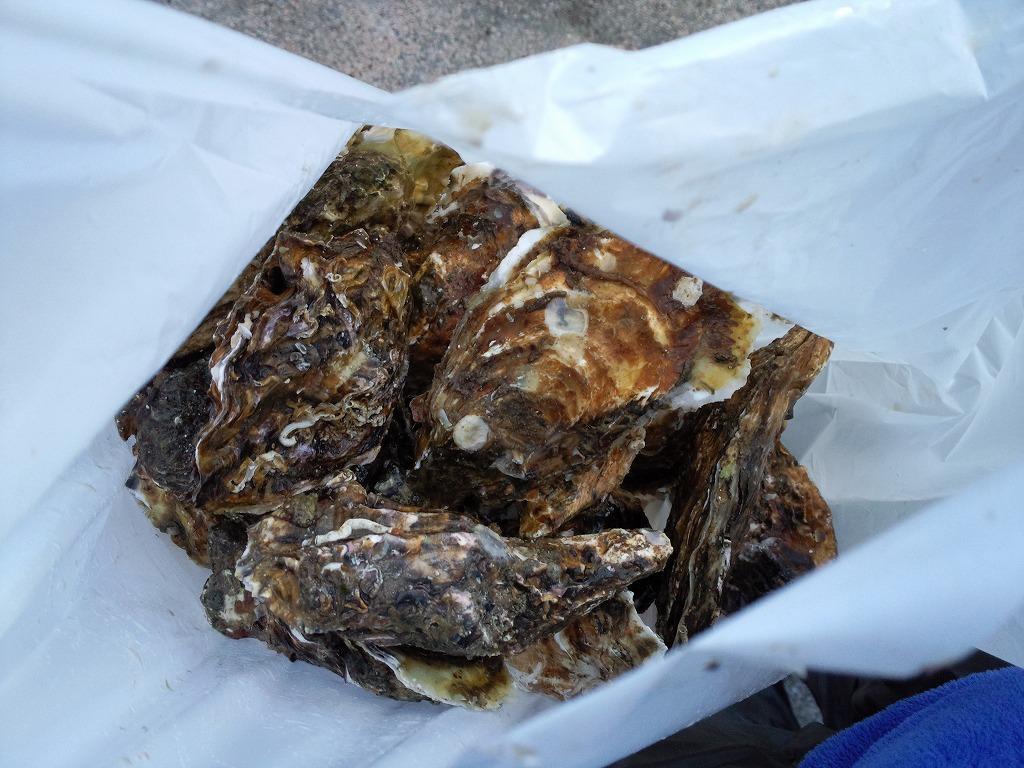 殻付き牡蠣15個1,000円