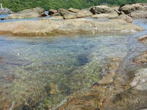 竜串海岸 2