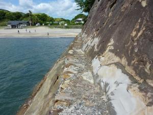 竜串海岸 11
