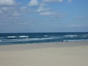 石見海浜公園の海岸