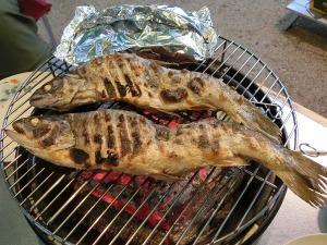 銀鮭の炭火焼き_20130810