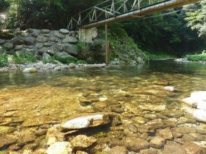 川遊び_20130810