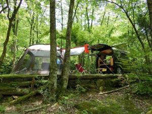 森のキャンプ場とKONG_20140524