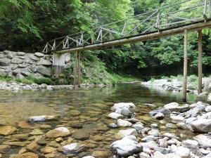 川遊び_20140524