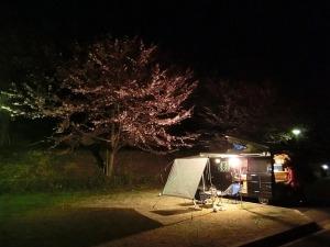 夜のサイト風景_20150328