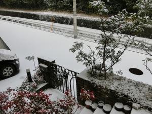 自宅前の雪_20160124