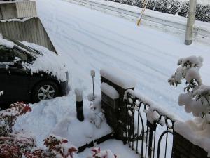 25日朝の積雪_20160125