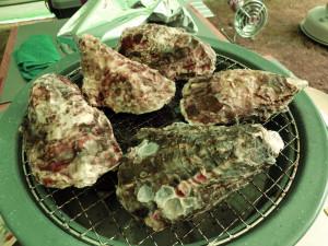 殻付き牡蠣を焼く_1_20160207
