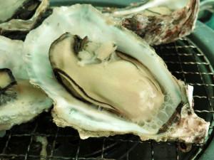 殻付き牡蠣を焼く_3_20160207