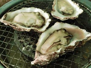 殻付き牡蠣を焼く_4_20160207