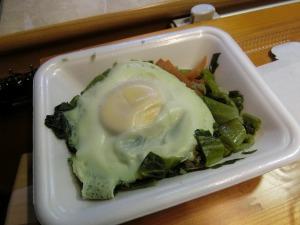 高菜の卵乗せ_20161224