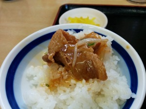 ご飯に肉_20170218