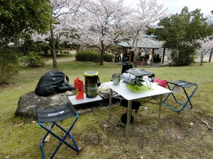 公園でお花見_1_20170409