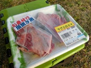 マリンセンターおさかな村で購入した本まぐろカマ_20170319