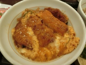 カツ丼並_20170616